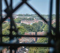 scaffolding fines